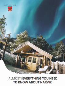 Northern lights photo on the cover of a brochure.
