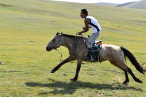 Our guide going fast on his horse in the Mongolian steppes.